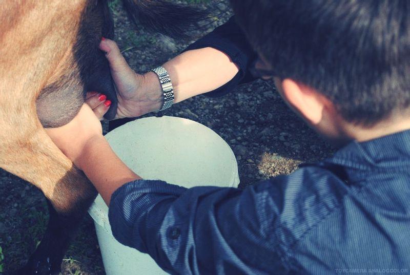 Adolescentes avec le zoku shin art @todorazor.com