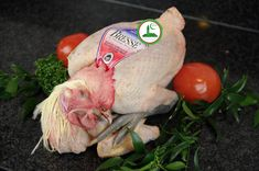 Poitrine de poulet nude gym workout@todorazor.com